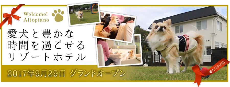 愛犬と豊かな時間を過ごせるリゾートホテル