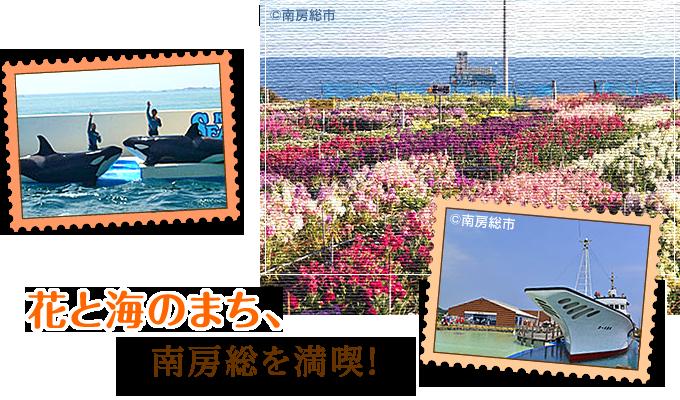 花と海のまち、南房総を満喫!